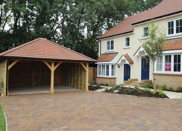 Thumbnail 3 bed semi-detached house to rent in Britannia Close, Hemel Hempstead
