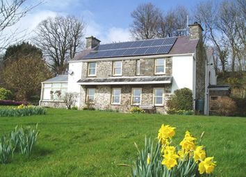 Thumbnail 5 bed detached house for sale in Bwlchllan, Nr. Lampeter