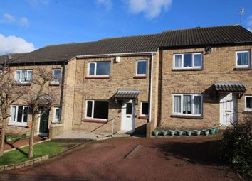 Thumbnail 3 bedroom terraced house to rent in Errington Place, Prudhoe