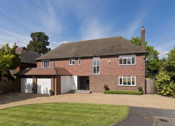 Thumbnail 4 bed detached house to rent in The Mount, Weybridge