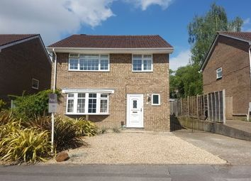 Thumbnail 4 bed property to rent in Lytchett Drive, Broadstone