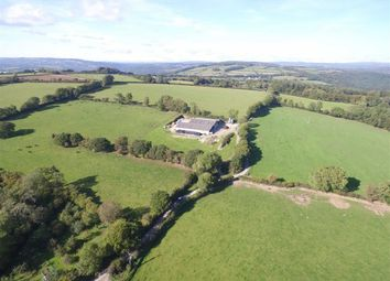 Thumbnail Land for sale in Bere Alston, Yelverton