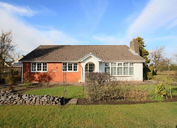 Thumbnail 4 bed detached bungalow for sale in Old Pope Lane, Whitestake, Preston