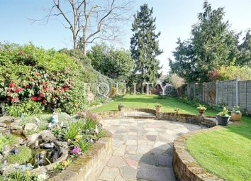Thumbnail 4 bed semi-detached house for sale in St Georges Road, Enfield