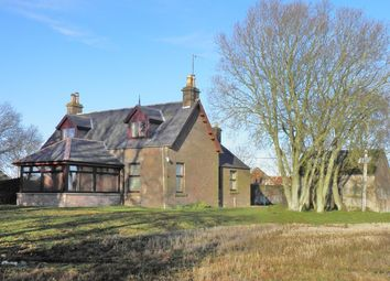 Thumbnail 3 bed detached house to rent in Colliston, Arbroath