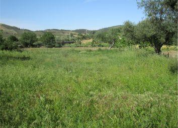 Thumbnail Farm for sale in Penamcor, Penamacor, Castelo Branco, Central Portugal