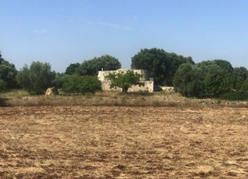 Thumbnail Land for sale in Donnagnora Project B, Ostuni, Puglia, Italy