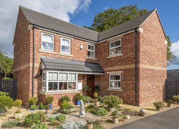 Thumbnail 4 bed detached house for sale in Wheatsheaf Close, Ripon