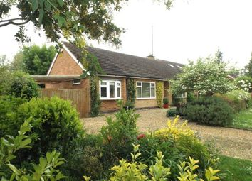 Thumbnail 3 bed bungalow for sale in Brook Lane, Great Easton, Market Harborough, Leicestershire