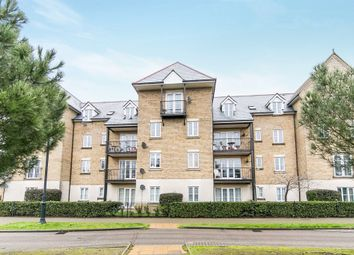 Thumbnail 2 bedroom flat for sale in Ravenswood Avenue, Ipswich