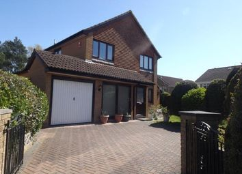 Thumbnail 4 bedroom detached house for sale in Mullins Close, Poole