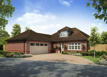 Thumbnail 3 bedroom detached bungalow for sale in Clematis Drive, Garstang, Preston