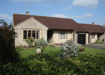 Thumbnail 3 bed bungalow for sale in Ham Meadow, Marnhull, Sturminster Newton