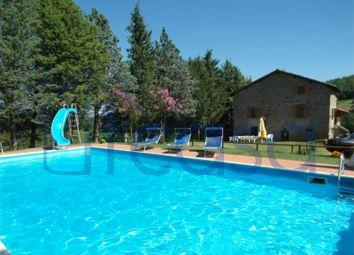 Thumbnail 7 bed farmhouse for sale in Casale Il Laghetto, Anghiari, Arezzo, Tuscany, Italy