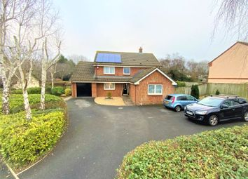Thumbnail 4 bed detached house for sale in Mulberry Way, Roundswell, Barnstaple