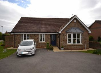 Thumbnail 3 bed detached bungalow for sale in Springfield Close, Sigglesthorne, East Yorkshire
