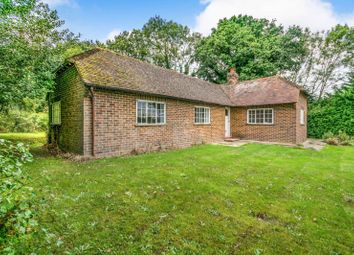 Thumbnail 2 bed bungalow to rent in Fittleworth Road, Wisborough Green, Billingshurst