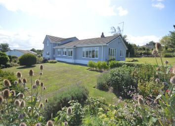 Thumbnail 4 bed detached house for sale in Moylegrove, Cardigan