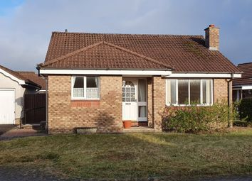 Thumbnail 2 bed bungalow for sale in Penman Gardens, Heathhall, Dumfries, Dumfries And Galloway