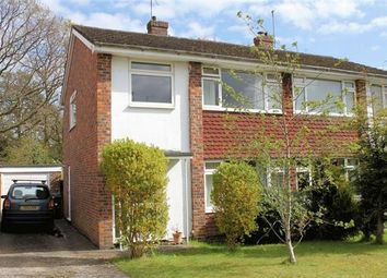 Thumbnail 3 bed semi-detached house to rent in West Close, Fernhurst, Haslemere