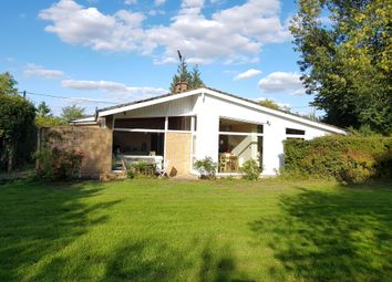 Thumbnail 3 bed bungalow to rent in Woodbridge Road, Debach, Woodbridge