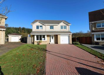 Thumbnail 4 bed detached house for sale in Beecraigs Way, Plains
