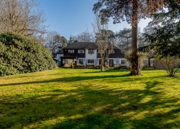 Thumbnail 7 bed property for sale in The Woods, Northwood