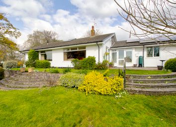 Thumbnail 4 bed bungalow for sale in Brook Lane, Woodgreen, Fordingbridge