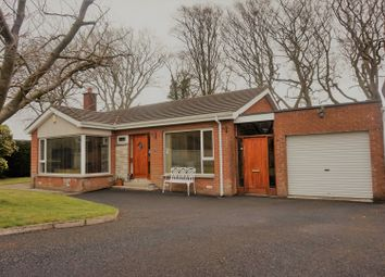 Thumbnail 3 bed detached bungalow for sale in Grovemount Park, Derry / Londonderry