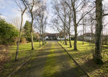 Thumbnail 4 bed detached house for sale in The Broyle, Shortgate, Lewes, East Sussex