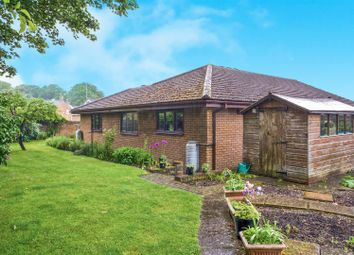 Thumbnail 4 bedroom detached bungalow for sale in Mill Lane, Ramsey, Huntingdon