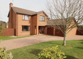 Thumbnail 4 bedroom detached house for sale in Aldergrange Park, Newtownards