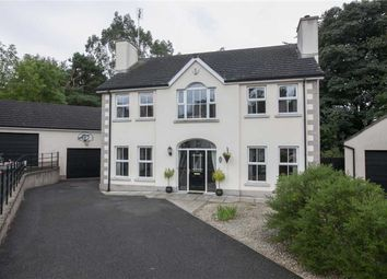 Thumbnail 4 bed detached house for sale in Labyrinth Cottages, Ballynahinch, Down