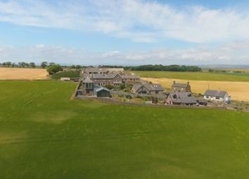 Thumbnail 4 bed detached house for sale in Montrose