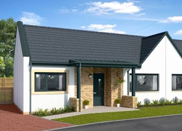Thumbnail 2 bedroom semi-detached bungalow for sale in The Muirs, Kinross