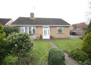 Thumbnail 2 bed detached bungalow to rent in Shady Grove, Hilton, Derby