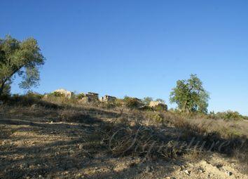 Thumbnail Land for sale in Santa Catarina Da Fonte Do Bispo, Tavira, Algarve, Portugal