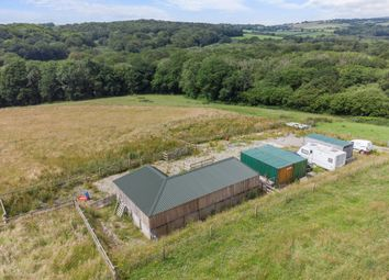 Thumbnail Equestrian property for sale in Frogwell Road, Callington