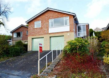 Thumbnail 3 bed detached bungalow to rent in 10, Bryn Close, Bryn Lane, Newtown, Powys