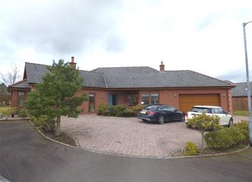 Thumbnail 4 bed detached bungalow for sale in Darrant Wynd, Terregles, Dumfries