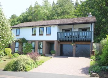 Thumbnail 4 bed detached house for sale in Hackwood Park, Hexham