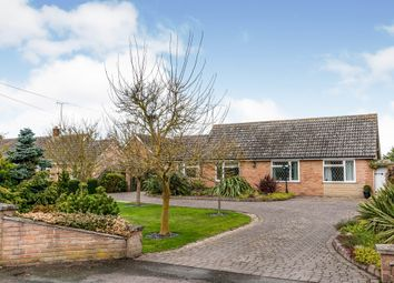 Thumbnail 4 bedroom detached bungalow for sale in Saxham Street, Stowupland, Stowmarket