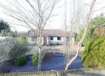 Thumbnail 3 bed detached bungalow for sale in The Drove, Barroway Drove, Downham Market, Norfolk