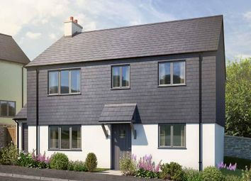 Thumbnail 3 bed detached house for sale in Blackawton, Totnes