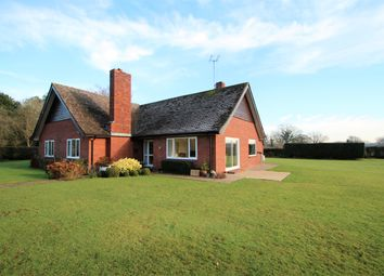 Thumbnail 3 bed detached bungalow for sale in Vesper Hawk Lane, Smarden, Ashford