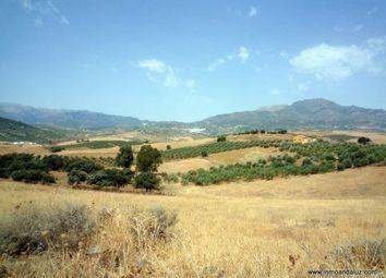 Thumbnail Land for sale in Spain, Málaga, Coín