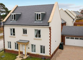 Thumbnail 6 bed detached house for sale in Daisy Lane, Newton Abbot