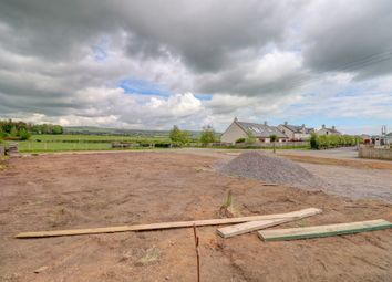 Thumbnail Land for sale in Elizafield, Low Road, Dumfries