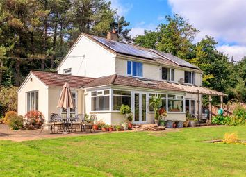 Thumbnail 4 bed cottage for sale in Wigpool, Mitcheldean