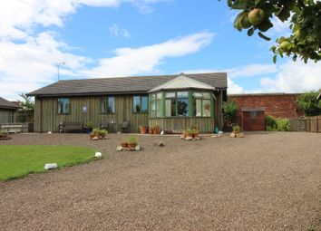 Thumbnail 3 bed cottage for sale in Eastfield Hall, Warkworth, Morpeth